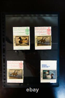 US Huge Early Mint State Duck Stamp Collection