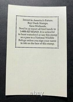 WTDstamps #RW80B 2013 US Federal Duck Stamp Mint OG NH
